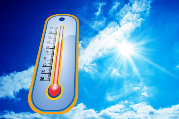 hohe Temperaturen im Sommer